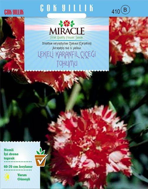 Lekeli Karanfil Çiçeği Tohumu 190 Tohum