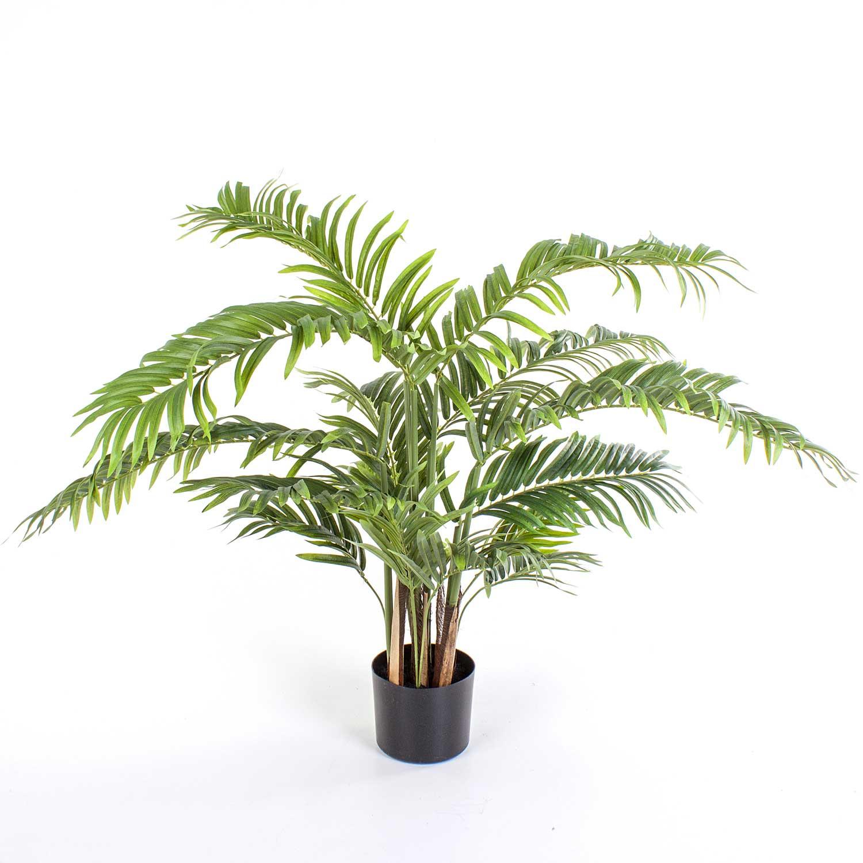 Dekoratif Palmiye Agaci Kentia 90 Cm Bezelye Com