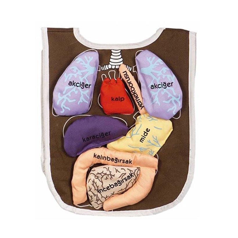 Dolgu Organ Onlugu Anaokulu Fen Merkezi Kitatoys Com Da