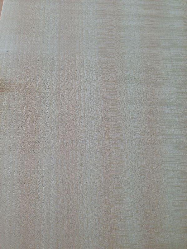 Akçaağaç Ağacı 18cm x 40cm x 8mm