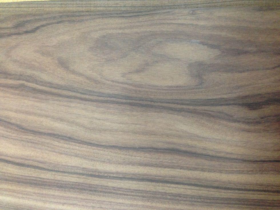 Hindistan Pelesenki Ağacı 15cm x 26cm x 15mm